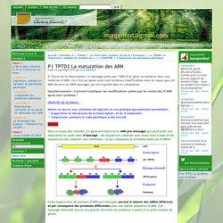 P1 TPTD2 La maturation des ARN - [monprofsvt@gmail.com]