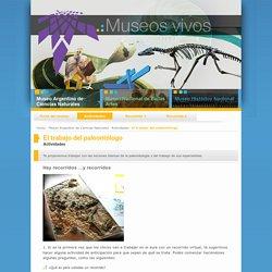 El trabajo del paleontólogo « Museos vivos