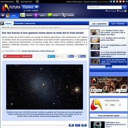 Sur les traces d'une galaxie naine dans le halo de la Voie lactée