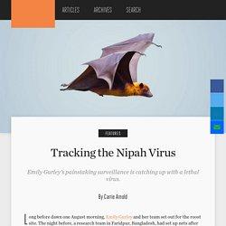 HOPKINS BLOOMBERG PUBLIC HEALTH MAGAZINE - 2019 - Tracking the Nipah Virus