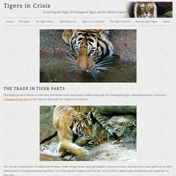 Trade In Tiger Parts