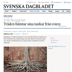 Träden hämtar sina tankar från roten