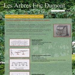 Eric Dumont : Une culture de tradition - Vente d'arbres fruitiers. Pépinières d'arbres fruitiers, Les Arbres Eric Dumont