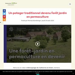 Un potager traditionnel devenu forêt jardin en permaculture