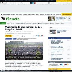 Vaste trafic de blanchiment de bois illégal au Brésil
