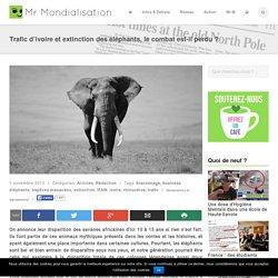 Trafic d'ivoire et extinction des éléphants, le combat est-il perdu
