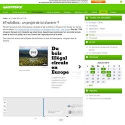 #TraficBois : un projet de loi d'avenir ?