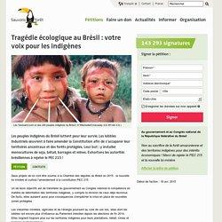 Tragédie écologique au Brésil