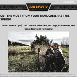 Get The Most From Your Trail Cameras This Spring - Muddy