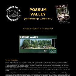 traiN'ternet - Possum Valley