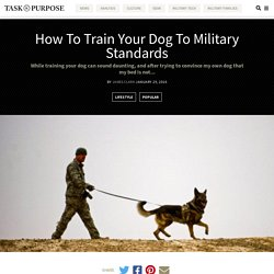 How To Train Your Dog To Military Standards