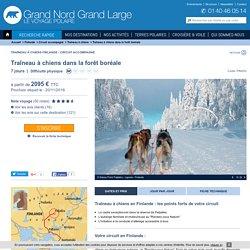 Traîneau à chiens Finlande - Traîneau à chiens dans la forêt boréale