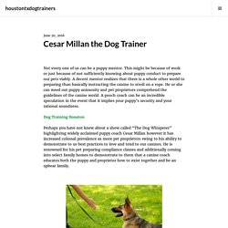 Cesar Millan the Dog Trainer – houstontxdogtrainers