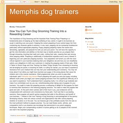 Memphis dog trainers: How You Can Turn Dog Grooming Training Into a Rewarding Career