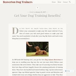 Get Your Dog Training Benefits! – Beaverton Dog Trainers