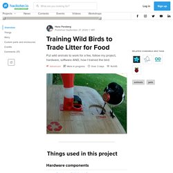 Training Wild Birds to Trade Litter for Food