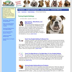 Training English Bulldogs - The Sensible Way