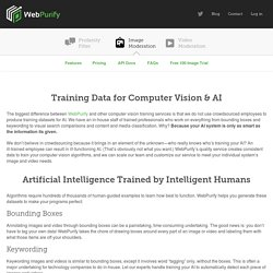 Training Data for Computer Vision & AI