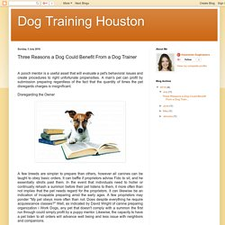 Dog Training Houston: Three Reasons a Dog Could Benefit From a Dog Trainer