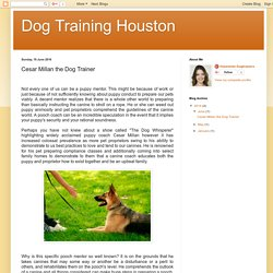 Cesar Millan the Dog Trainer