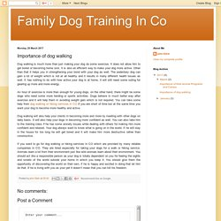 Family Dog Training In Co: Importance of dog walking