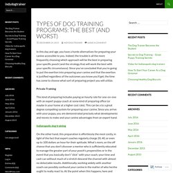 Types of Dog Training Programs: The Best (and Worst)