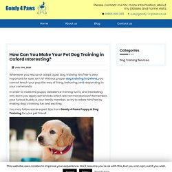 How Can You Make Your Pet Dog Training in Oxford Interesting?
