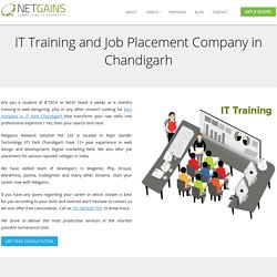 IT Training and Job Placement Company Chandigarh