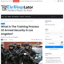 What Is The Training Process Of Armed Security In Los Angeles?
