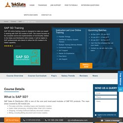 SAP SD Training Online With Live Projects And Job Assistance