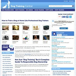 How To Train A Dog, dog training tips and techniques for home ba