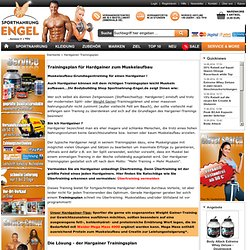 Hardgainer Trainingsplan - jetzt Muskelaufbau erzielen!