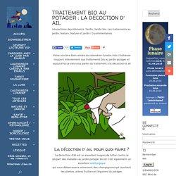 LA DECOCTION D' AIL COMME TRAITEMENT BIO - calendrier-lunaire.info