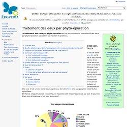 Traitement des eaux par phyto-épuration