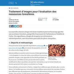 Traitement d'images pour l'évaluation des ressources forestières