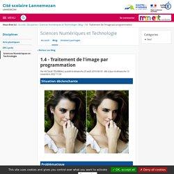 1.4 - Traitement de l'image par programmation - Sciences Numériques et Technologie - Cité scolaire Lannemezan