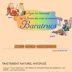 TRAITEMENT NATUREL ANTIPUCE