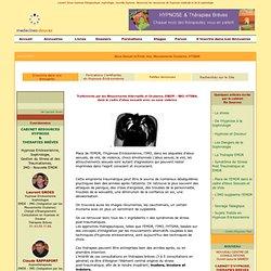 Traitements par les Mouvements Alternatifs et Oculaires, EMDR – IMO, HTSMA, dans le cadre d'abus sexuels avec ou sans violence