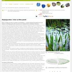 les traitements naturels, la phytoépuration de l'eau ''''ecologs ^^