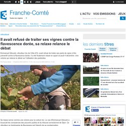 FRANCE 3 FRANCHE COMTE 06/12/14 Il avait refusé de traiter ses vignes contre la flavescence dorée, sa relaxe relance le débat