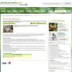 Traitez les poux des poules de manière naturelle (Trucs & Astuces)