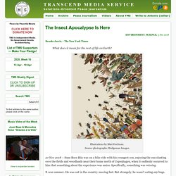 MEDIA SERVICE » The Insect Apocalypse Is Here