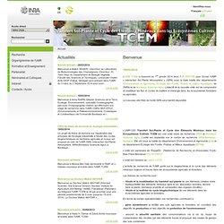 TCEM - Transfert Sol-plantes et Cycle des Elements Mineraux dans les Ecosystèmes Cultivés