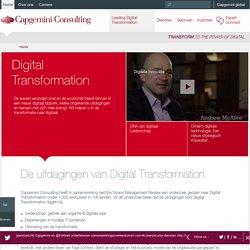 Capgemini Consulting Nederland