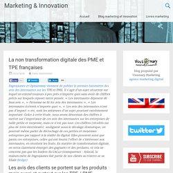 La non transformation digitale des PME et TPE françaises