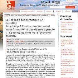 """Du champ à l'usine, production et transformation d'une denrée agricole : la pomme de terre et le """"système"""" McCain"""