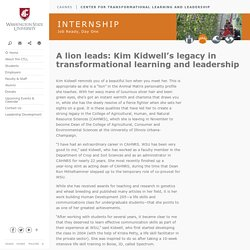 A lion leads: Kim Kidwell's legacy in transformational learning and leadership