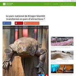 Le parc national de Kruger bientôt transformé en parc d'attractions ?
