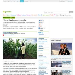 Global food system must be transformed 'on industrial revolution scale'