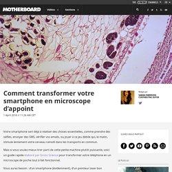 Comment transformer votre smartphone en microscope d'appoint